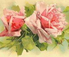 Breast Cancer Pink Rose