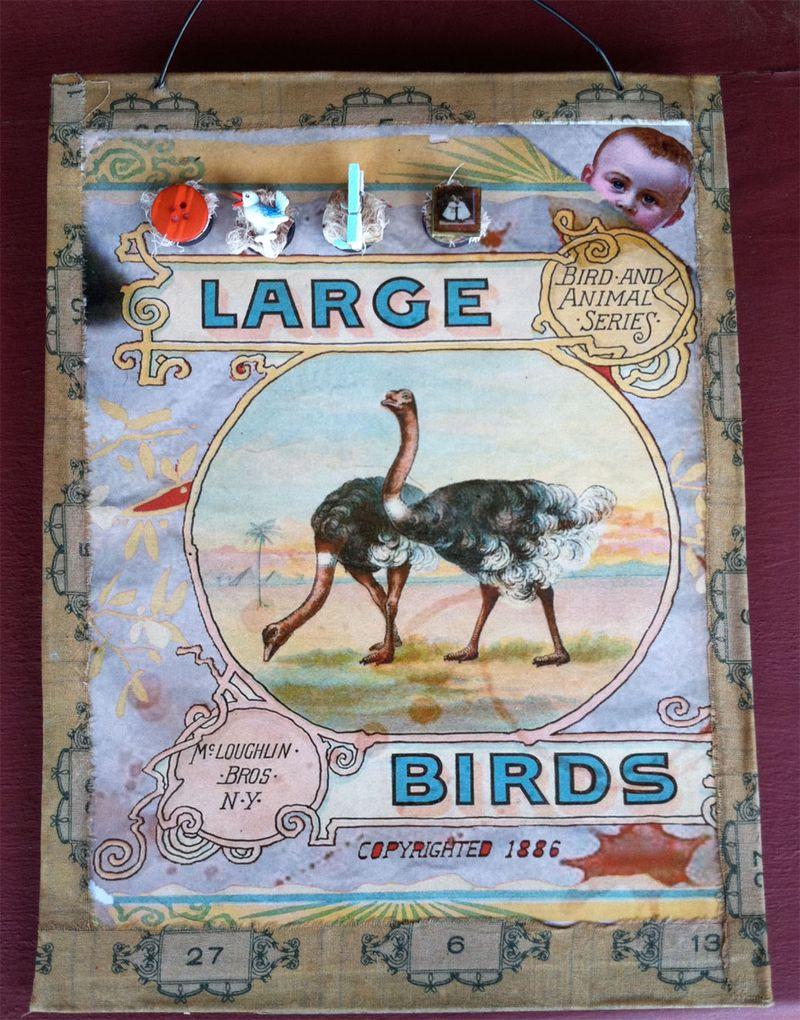 Magneticboardbirds