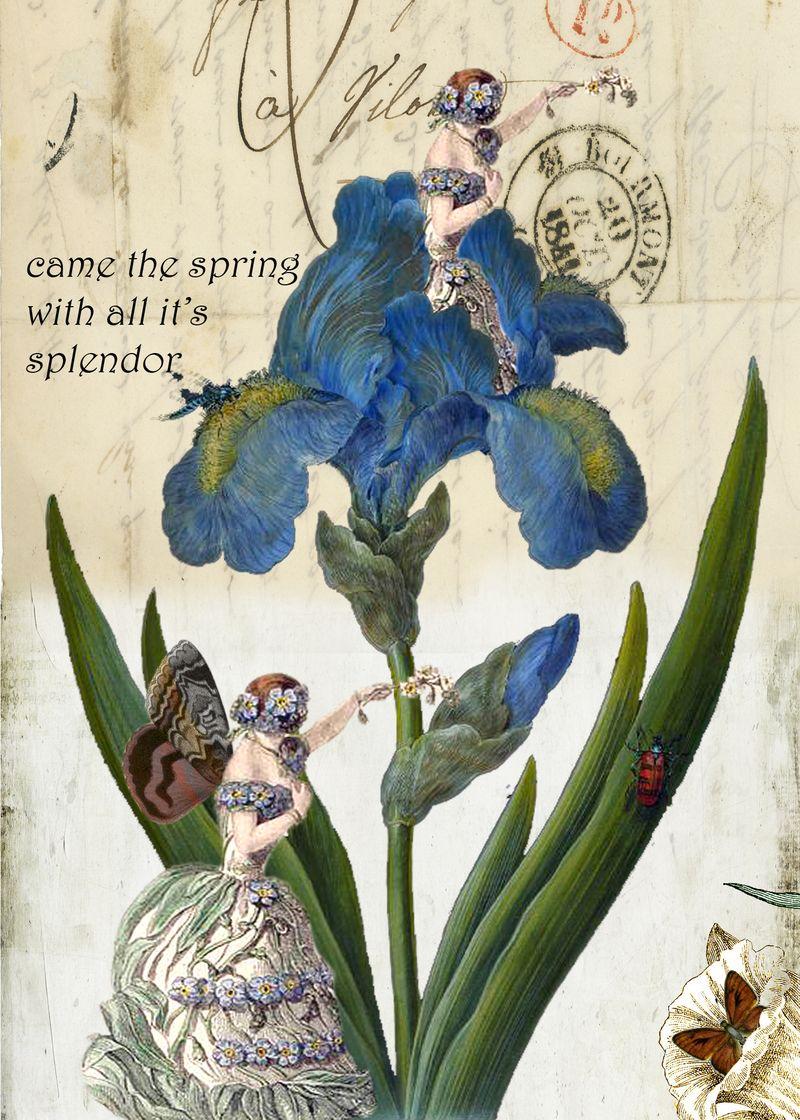 Blueflowergirl copy