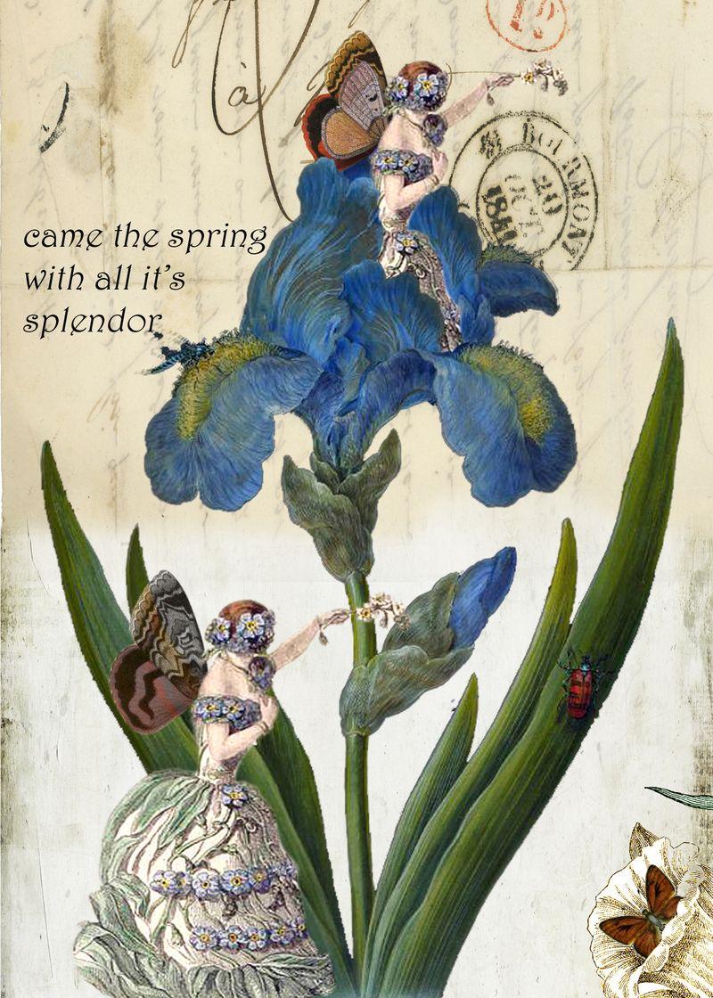 Blueflowergirl