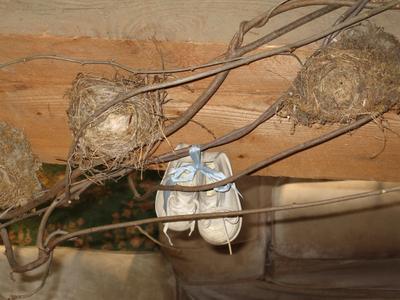 Nestshoes1
